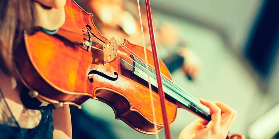 violinles
